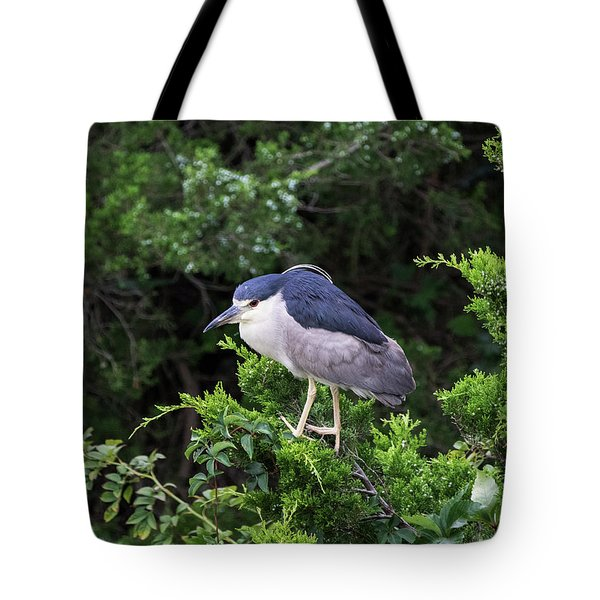 Shore Bird Roosting In A Tree Tote Bag