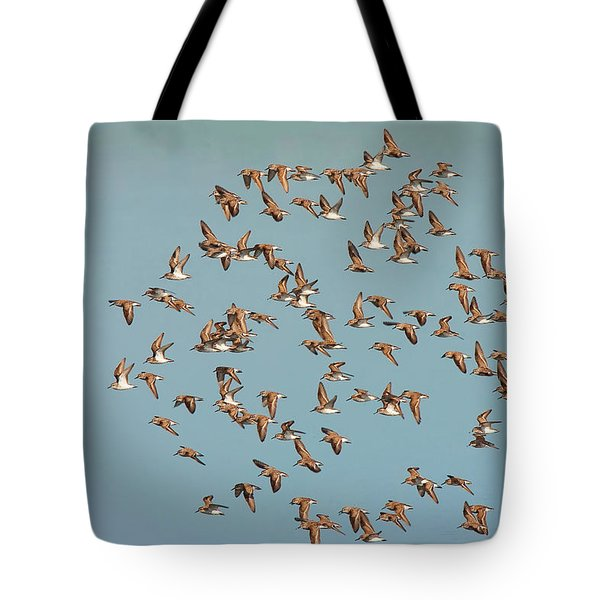 Tote Bag featuring the photograph Shore Birds In Flight by Ram Vasudev