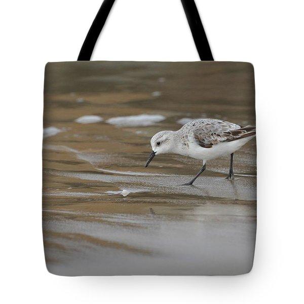 Shore Pickings Tote Bag by Fraida Gutovich