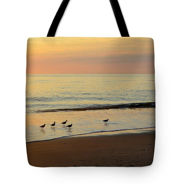 Tote Bag featuring the photograph Shorebirds 9/4/17 by Barbara Ann Bell