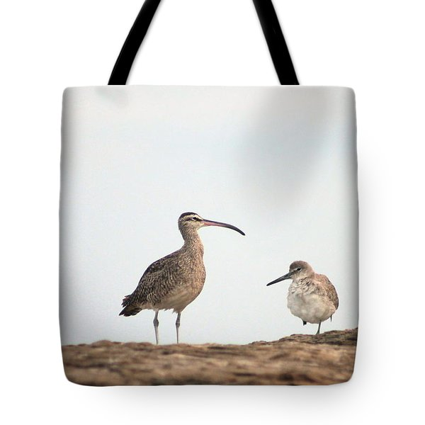 Shorebirds Of Windansea Beach Tote Bag by Bruce Patrick Smith