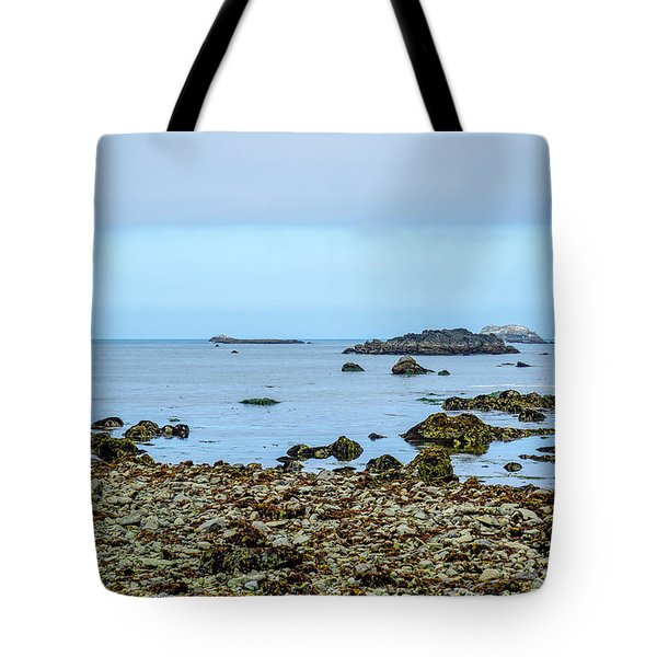 Shoreline Tote Bag by Ric Schafer