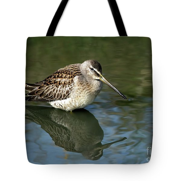 Tote Bag featuring the photograph Short-billed Dowitcher by Sharon Talson