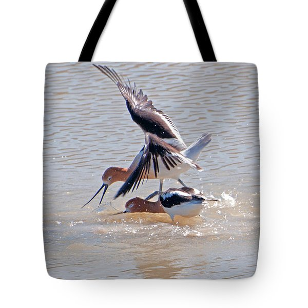 Tote Bag featuring the photograph Short Conflict by Lula Adams