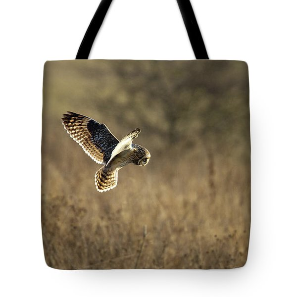 Short-eared Owl About To Strike Tote Bag