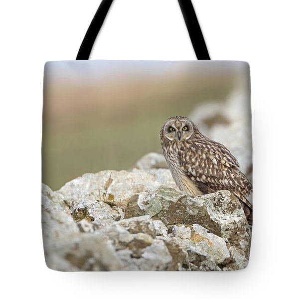 Short-eared Owl In Cotswolds Tote Bag