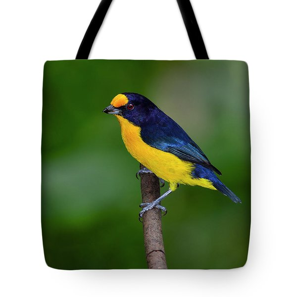 Short Round Tote Bag by Tony Beck
