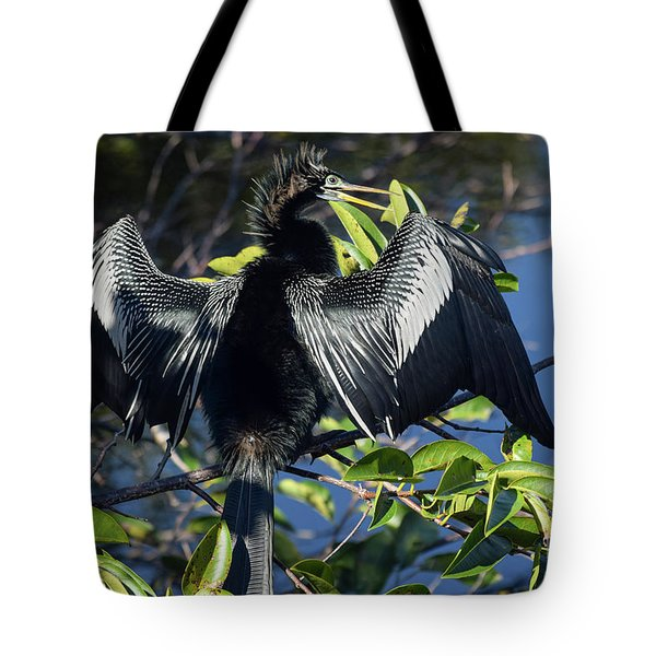 Show Drying Tote Bag