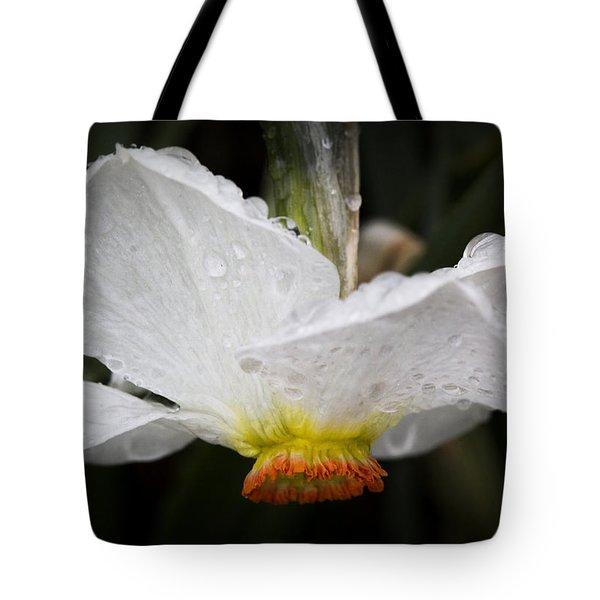 Showered Daffodil Tote Bag
