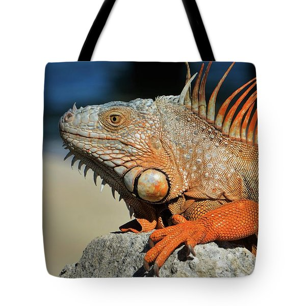 Showing My Spikes Tote Bag by Pamela Blizzard