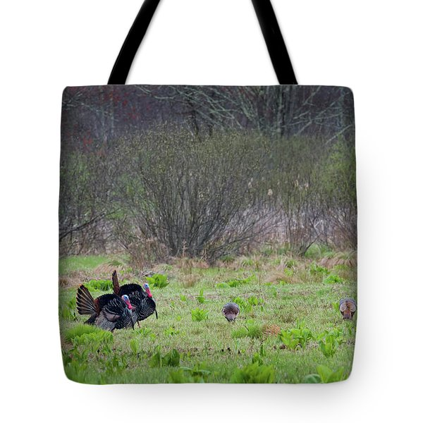 Tote Bag featuring the photograph Showing Off by Bill Wakeley