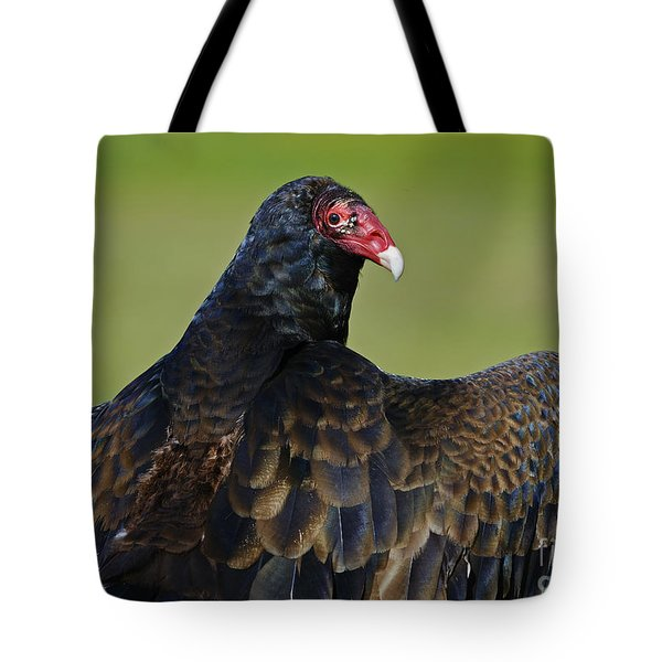 Showing Off Her Wings..... Tote Bag