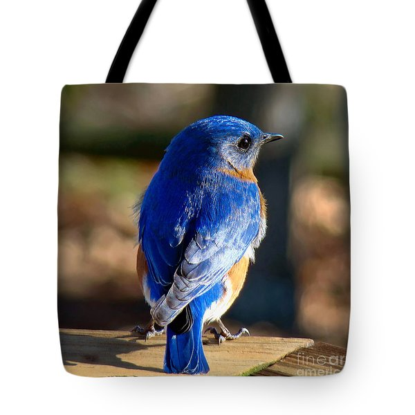 Showing Off My Beautiful Blue Feathers In The Sunlight Tote Bag