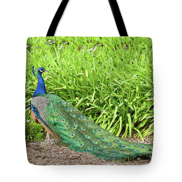 Tote Bag featuring the photograph Showing Off by Ram Vasudev