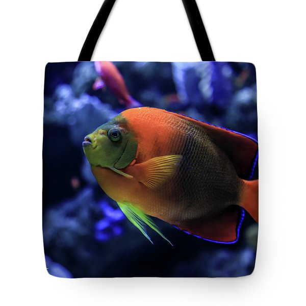 Tote Bag featuring the photograph Showoff by T A Davies