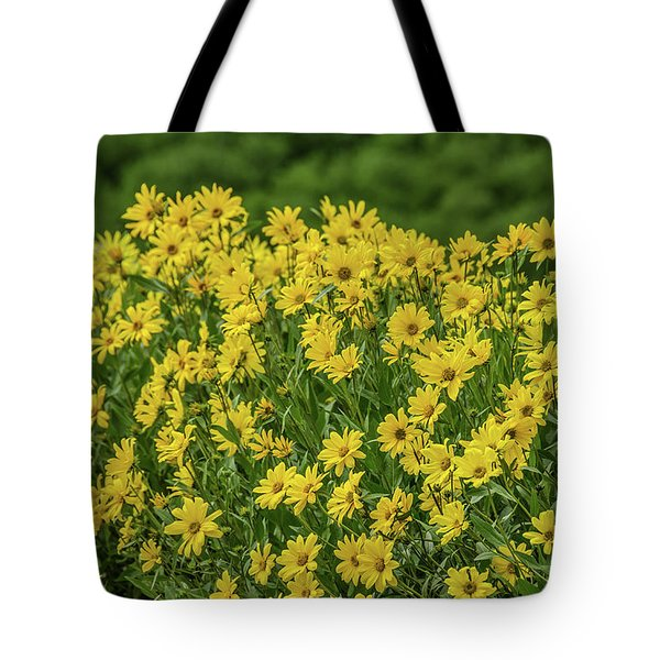 Tote Bag featuring the photograph Showy Goldeneye by Sue Smith