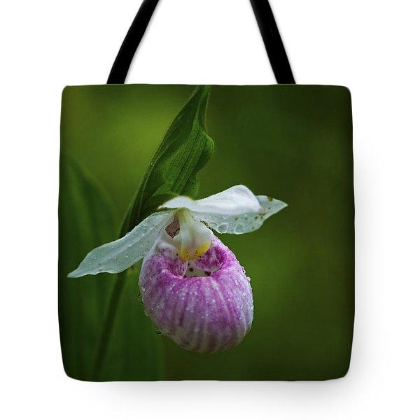 Showy Lady's Slipper.. Tote Bag by Nina Stavlund