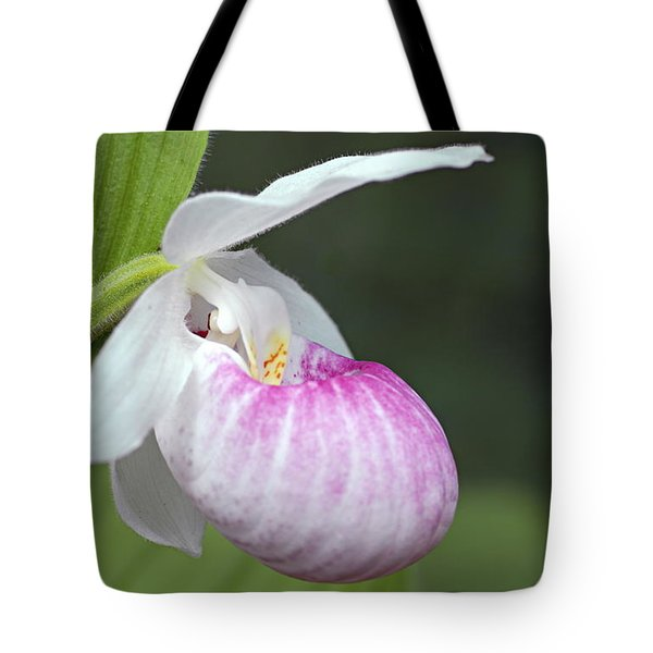 Showy Ladyslipper Tote Bag by Larry Ricker
