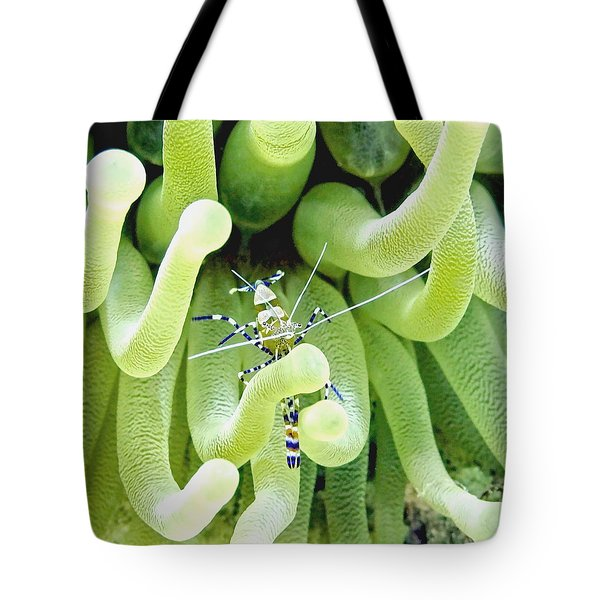 Shrimp And The Anemone Tote Bag
