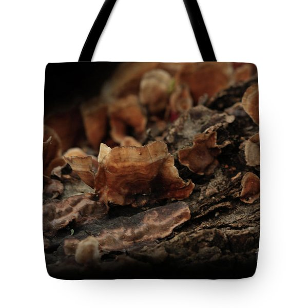 Tote Bag featuring the photograph Shrooms by Kim Henderson