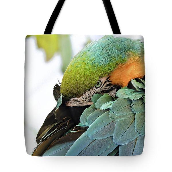 Shy Macaw Tote Bag