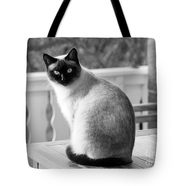Siamese Cat Tote Bag