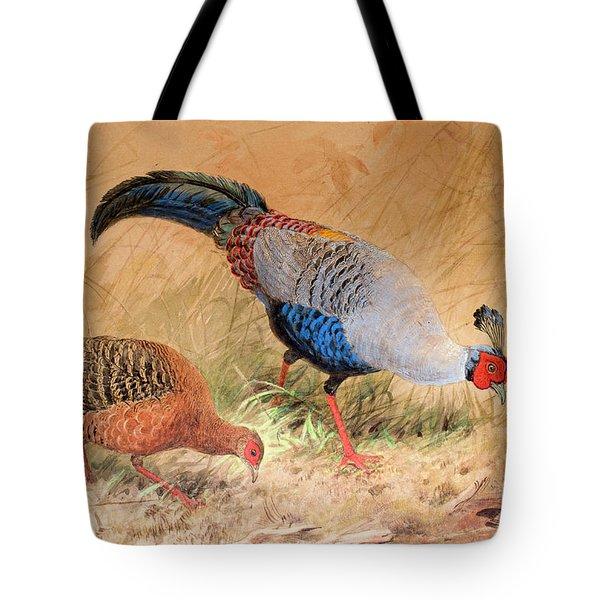 Siamese Pheasant  Tote Bag by Joseph Wolf