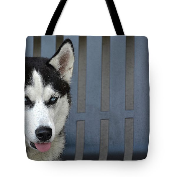 Siberian Husky  Tote Bag by Renee Anderson