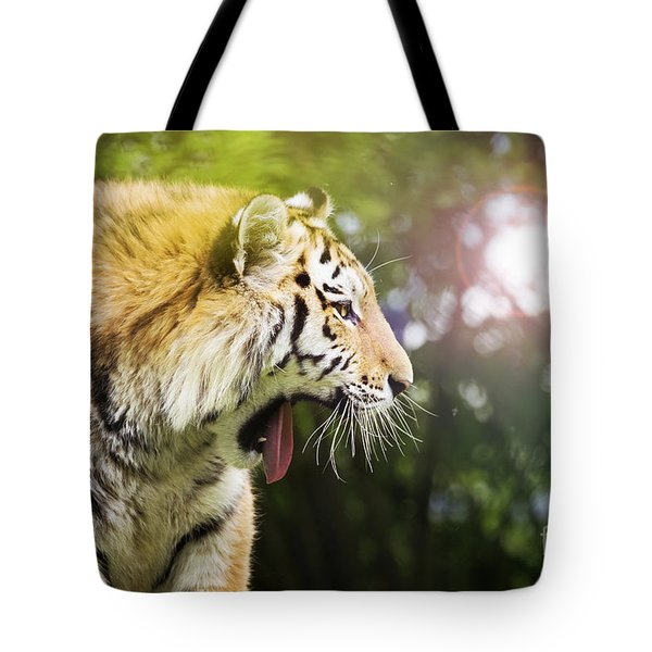 Siberian Tiger In Sunlit Forest Tote Bag