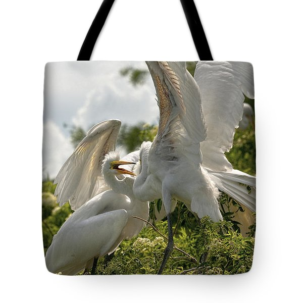 Sibling Squabble Tote Bag by Christopher Holmes