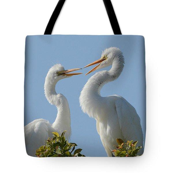 Siblings 2 Tote Bag by Fraida Gutovich