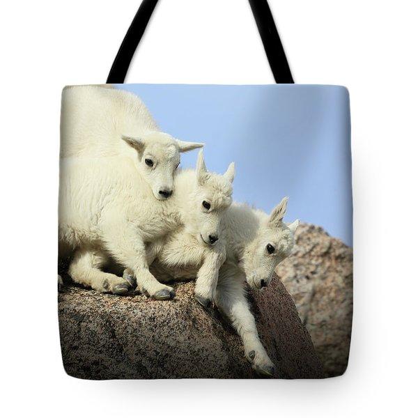 Siblings Tote Bag