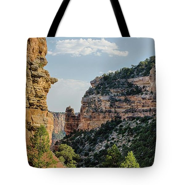 Side Canyon View Tote Bag