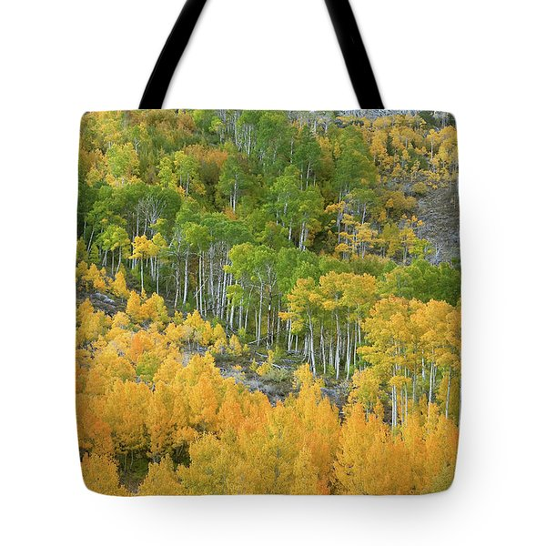 Tote Bag featuring the photograph Sierra Autumn Colors by Ram Vasudev