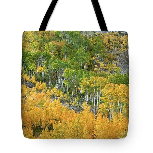Sierra Autumn Colors Tote Bag