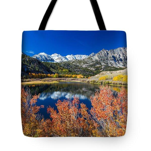 Sierra Foliage Tote Bag
