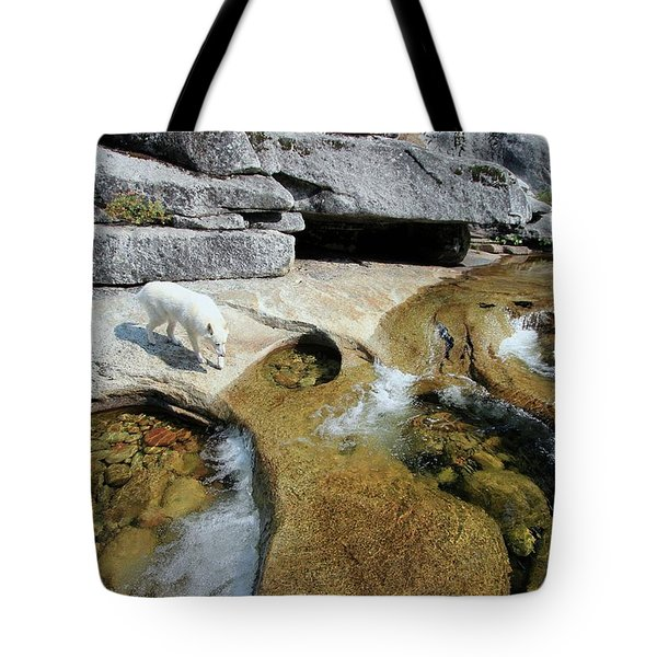 Tote Bag featuring the photograph Sierra Wild by Sean Sarsfield