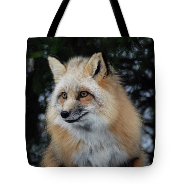 Sierra's Profile Tote Bag by Richard Bryce and Family