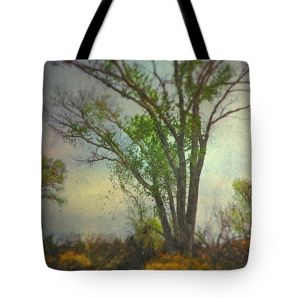 Signs  Tote Bag by Mark Ross