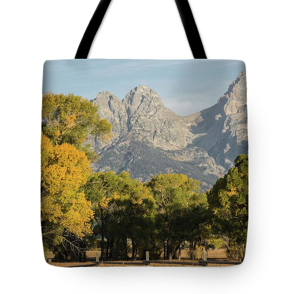 Tote Bag featuring the photograph Signs Of Autum by Colleen Coccia