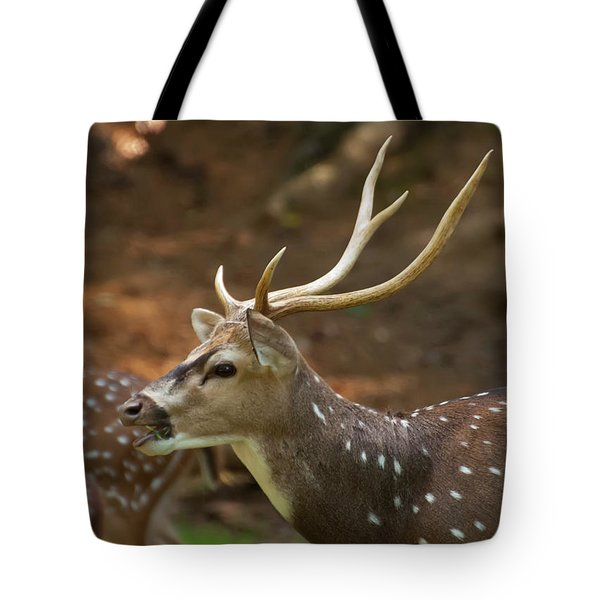Tote Bag featuring the photograph Sika Deer Chewing Grass by Chris Flees