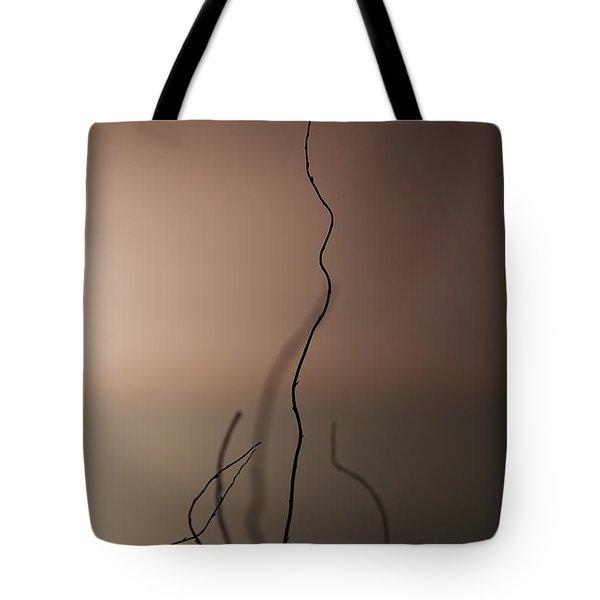 Silence Tote Bag by Evelina Kremsdorf