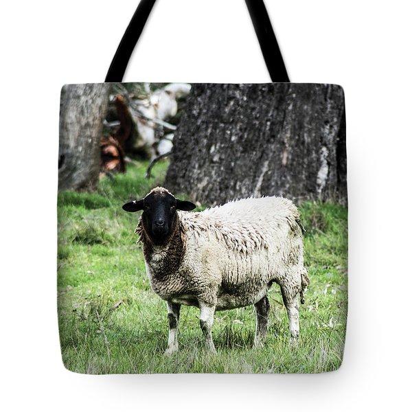 Silence Of The Umm Sheep 1 Tote Bag