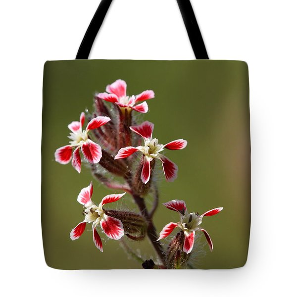 Tote Bag featuring the photograph Silene by Richard Patmore