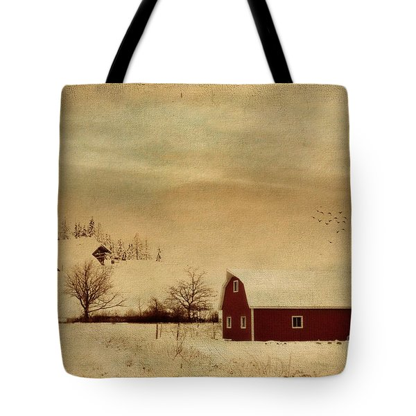 Tote Bag featuring the photograph Silent Morning by Chris Armytage