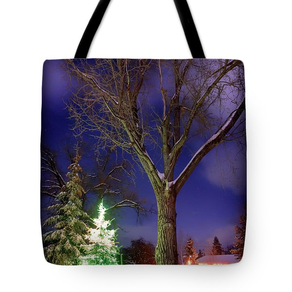 Tote Bag featuring the photograph Silent Night by Cat Connor