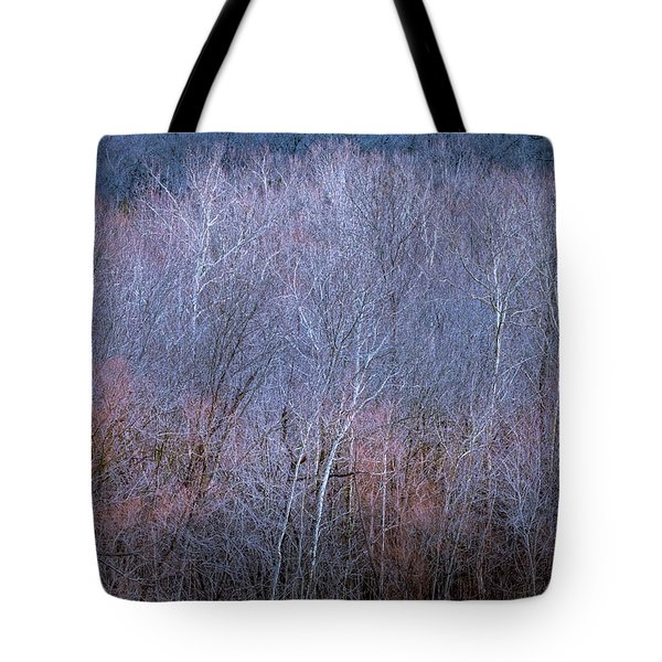 Silent Trees Tote Bag