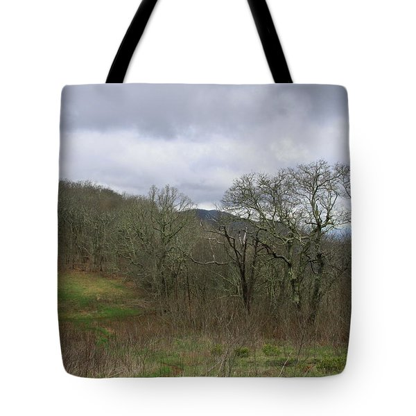 Silers Bald 2015a Tote Bag
