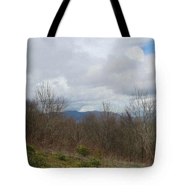 Silers Bald 2015b Tote Bag