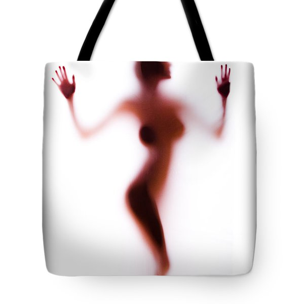 Silhouette 14 Tote Bag by Michael Fryd